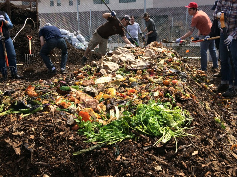 A Guide To Composting What You Need To Know West Chase